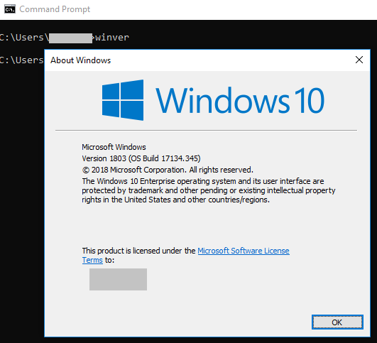 """Output of """"winver"""" command to see Windows version"""